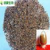 china supplier dodder seed powder herb medicine