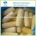 2014 nueva temporada iqf maíz dulce congelado