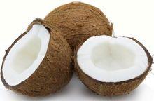 Coconut shield
