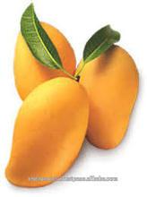 Superior Quality Indian Mango pulp