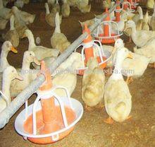 industry welcomed duck feeder pan