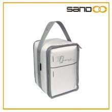 Wholesale fashional fridge to go portable cooler bag, Cold pack