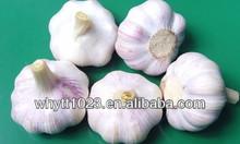 100% natural!!Lower blood sugar 30%-60% UV Garlic polysaccharide