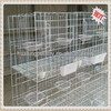 The new type and superior fancy quail cage for sale