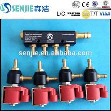 dual fuel bosch injector rail