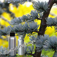 1000 Ml Atlas Cedar Essential Oil