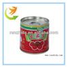28-30% Brix Tomato Sauce/Paste/Ketchup dispenser