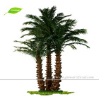 APM046 GNW 14ft High Artificial foxtail palm mini palm trees plant for Restaurant decoration indoor use