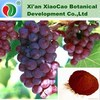 Organic Grape Seed Extract Softgel Capsule,Sell Grape Seed Extract Alcohol 95