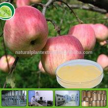 GMP factory natural pure apple powder