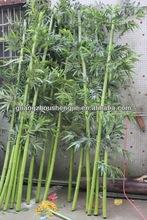 Las ventas lt081908hot decorativo de bambú artificiales del árbol, decorativo de bambú artificiales, falsos de bambú hecha en china