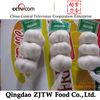 Hot Sale Fresh Chinese 3p Pure White Garlic