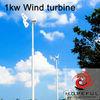 1kW off grid hybrid solar wind power system