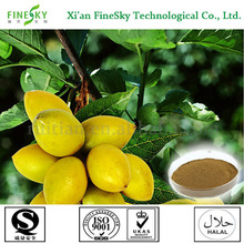 Top quality olive leaf extract oleuropein 40% powder manufacturers, free radical scavenger
