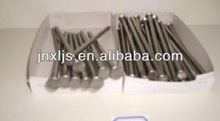 with Head Common Iron Nails