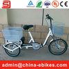 500W 48V Electric Pedicab Rickshaw(JST02)