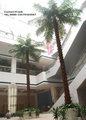 Interior e exterior Artificial grande palmeira