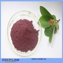 high quality acai berry lose weight