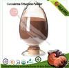 oganic reishi mushroom extract ganoderma triterpene Powder