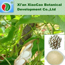 White Kidney Bean Extract Powder Phaseolamin
