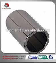 High Quality Neodymium Magnet Motor