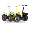 2014 Giant Wheel Folding Portable Electric Scooter/Electro Scooter