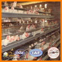 Hot sale 3 layer chicken cage, cages for chickens, poultry farming equipment
