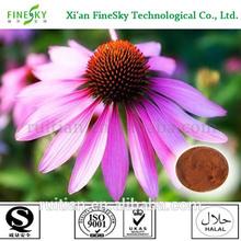 New season echinacea purpurea herb extract powder