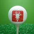 Mejor precio vendedor caliente de la marca de Golf