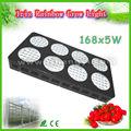 china agente de importação na índia 168x5w led de alta potência planta cresce a luz kits para estufas com estrutura de hidroponia