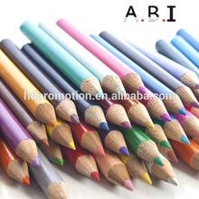 Promotion pastel pencil