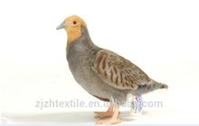 plush bird toys, cheapest brid toys plush withh wings
