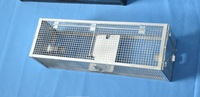 Mouse trap cage, live animal trap cage