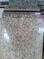 Chino del grano de oro amarillo granito suelo