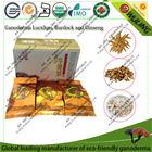 organic herbal tea with reishi, ginseng and burdock