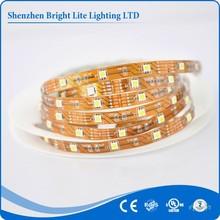 5050-Nonwaterproof swimming pool led strip lighting IP20 warm white 30LED/meter smd led strip UL certificate