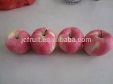 Fresh crisp sweet red fuji apple from China