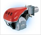 High cost performance riello gas burner for boiler