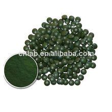 wholesale now spirulina powder supplier