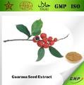 Bnp vende alta qualidade guaraná extrato de semente de em pó de cafeína