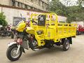 /diesel motor de gasolina de triciclo de carga 3 y ruedas de la motocicleta