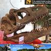 My dino-theme park equipment orthoceras fossil
