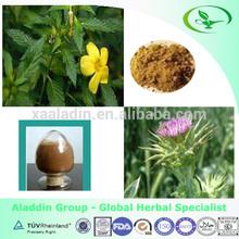 Factory Price & Natural Powdered Damiana/ Damiana Powder Extract
