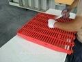 700 mm * 600 mm pie de cerdo del sistema para lactación cajón