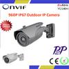 1.3 Megapixel IP67 IR Viewerframe Mode Low Cost IP Camera