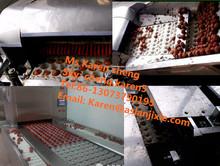 cherry pit remove machine /olive pitting machine