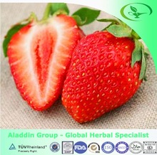 Top Quality Tannic Acid /Strawberry Extract/ polyphenols & Vitamin C