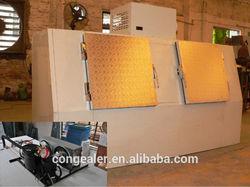 Refrigerated bagged ice storage bin/ solar power optional