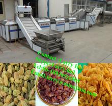 dried raisin machine/raisin machine/dry fruit cleaning machine