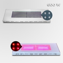 china distributor 300w 600w classics series grow led light for vegetable agriculture growth